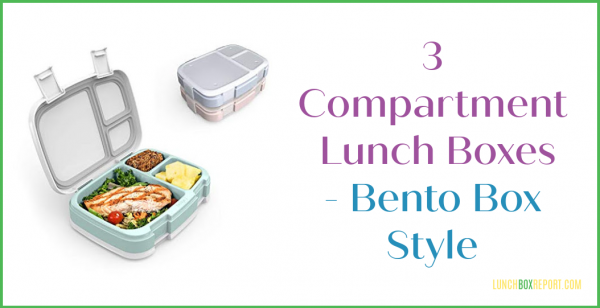 3 Compartment Lunch Boxes — Bento Box Style