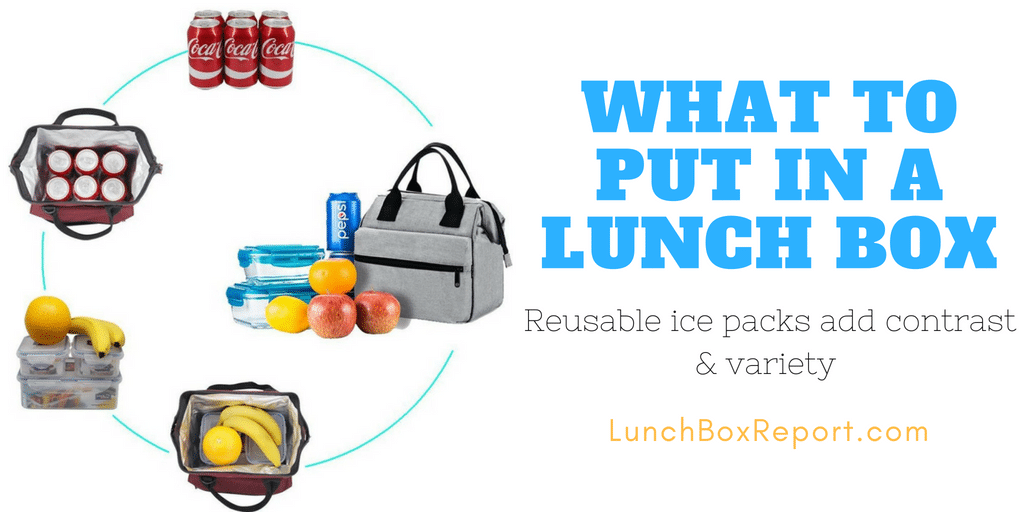 What To Put in a Lunch Box - Luch Box Report