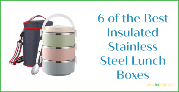 6 Of The Best Insulated Lunch Boxes That are Stainless Steel
