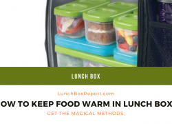 How to Keep Food Warm in a Lunch Box. Get The Magical Methods.