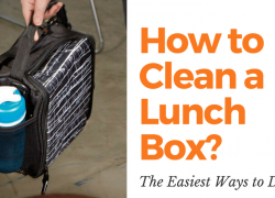 How to Clean a Lunch Box. The Easiest Ways to Do It.