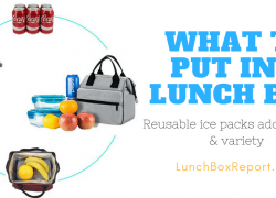 What To Put In A Lunch Box For Your Kids